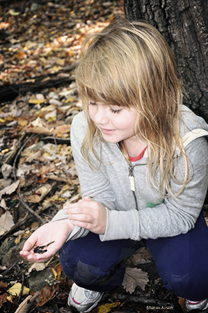 little girl holding a salamander